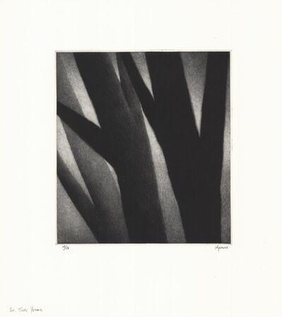 Robert Kipniss, 'Trees - forms.', 2017