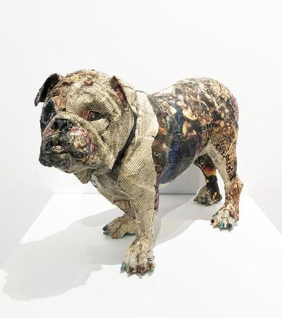 Will Kurtz, 'Bulldog', 2014