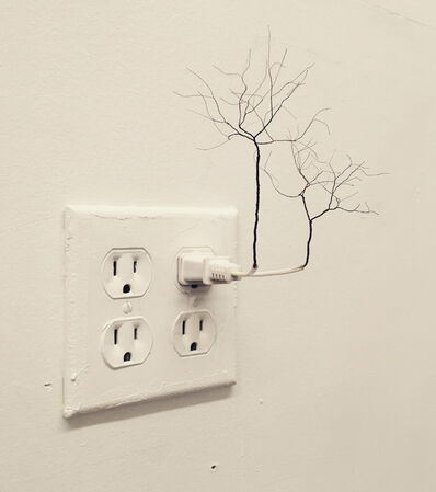 Jinsu Han, 'Plug Tree', 2016