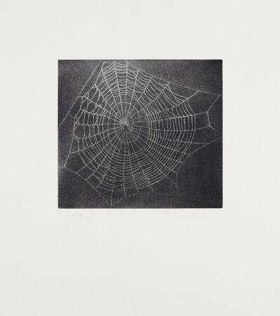 Vija Celmins, 'Untitled (Web 1), from MOCA portfolio', 2001