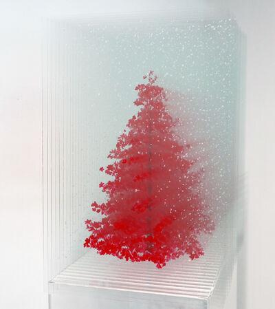 Ardan Özmenoğlu, 'Red pine', 2019