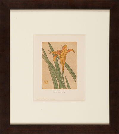 Arthur Wesley Dow, 'Ipswich Prints: Lily', 1901