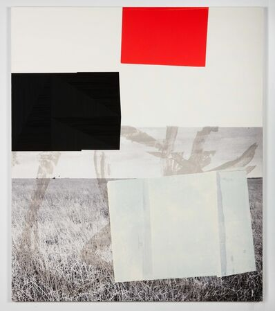 Kevin Appel, 'Screen (prairie)', 2011