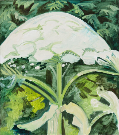 Lois Dodd, 'Cow Parsnip in Early Stage of Bloom', 2003