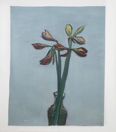 Damien Cabanes, 'Amaryllis vase fond gris n°2', 2020