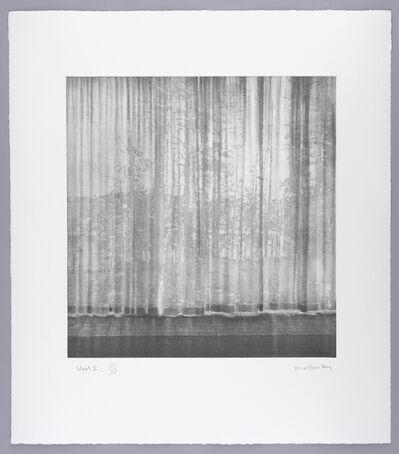 Paul Winstanley, 'Veil 2', 2008
