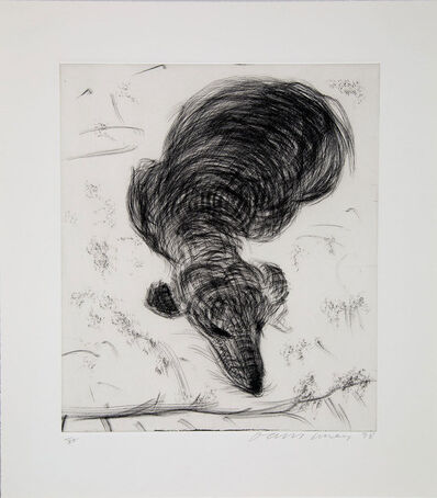 David Hockney, 'Dog Etching No. 14 from Dog Wall', 1998