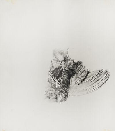 Stephanie Serpick, 'Still Drawing 2', 2011