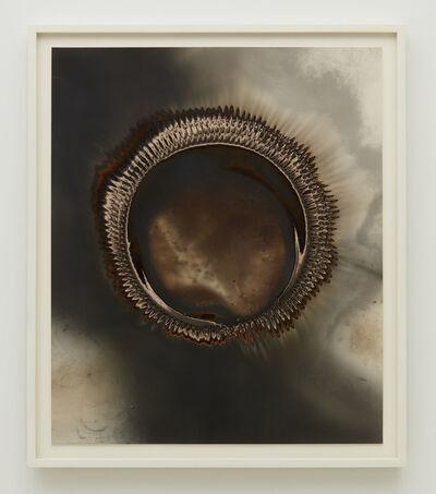 Christopher Colville, 'Ouroboros 13', 2018