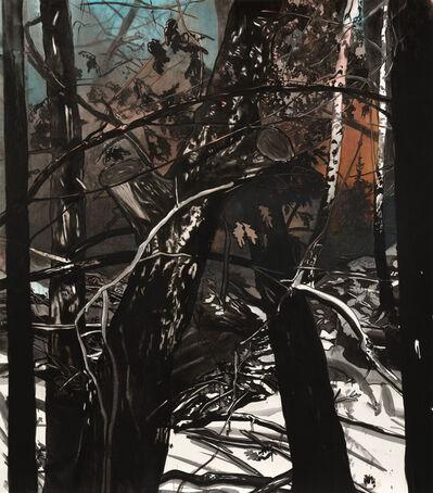 Sebastian Nebe, 'Winternacht', 2014