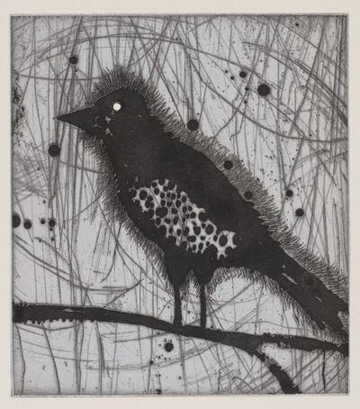 Dan Rizzie, 'Little Harried Bird', 2018