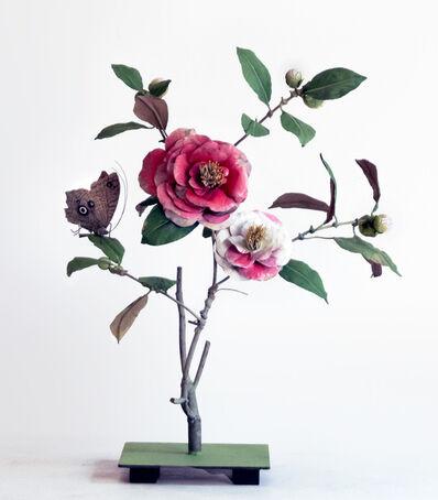 Carmen Almon, 'Two Tone Camellia with Owl Moth', 2019