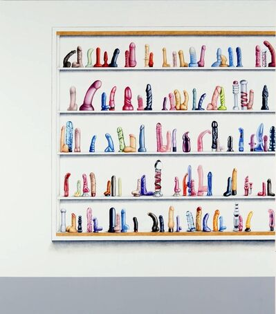 Su-en Wong, 'DH-4 Dildos in Display Case', 2009
