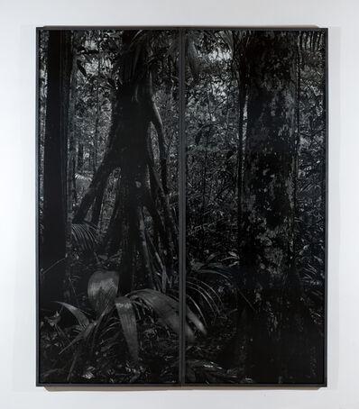 Balthasar Burkhard, 'Rio Negro', 2002