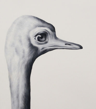 Shelley Reed, 'Ostrich (after Larousse)'
