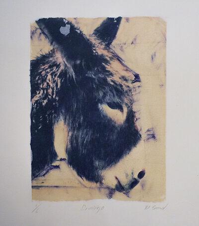 Mark Beard, ' Untitled 27 (Domingo)[Polaroid Transfer of Donkey Mule on Rives BFK]', 1996-2003