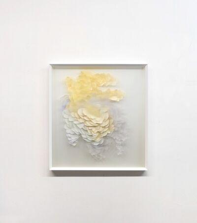 Maurizio Donzelli, 'Mirror 4817', 2017