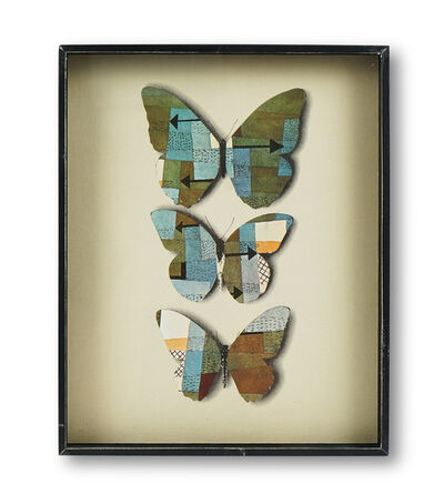 Jiri Kolar, 'Butterfly showcase', 1970