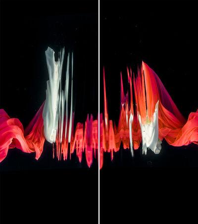 Mario Arroyave, 'Kaizen VI (dyptych)', 2016