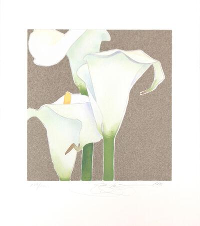 Gary Bukovnik, 'Calla Lily Study', 1998