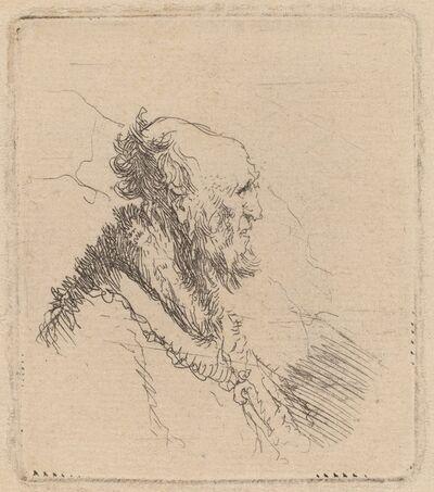 Rembrandt van Rijn, 'Bald Old Man with a Short Beard in Profile', ca. 1635