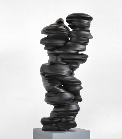 Tony Cragg, 'Different Points of View', 2013