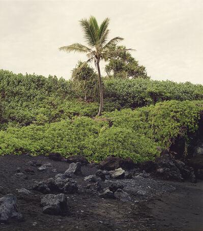LM Chabot, 'Hawaii 47', 2015