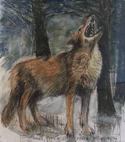 Russell Yuristy, 'Coyote Howling', 2020