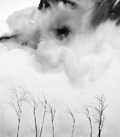 Lynn Lim 林丽云, 'Woods Amongst Clouds #2', 2017