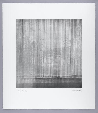 Paul Winstanley, 'Veil 3', 2008