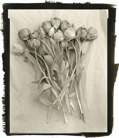 Ray Bidegain, 'Tulips', 2010