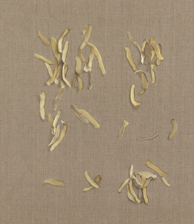 Helene Appel, 'Potato peel', 2013