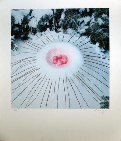 Nils Udo, 'Composition aux fruits'