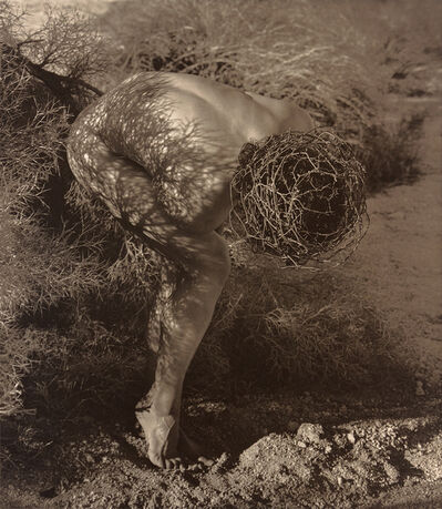Herb Ritts, 'Male Nude with Thorns, Joshua Tree', 1989
