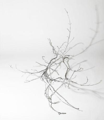 Caroline Heider, 'Prop – Form eines Asthaufens (nach G.W. Leibniz)', 2013