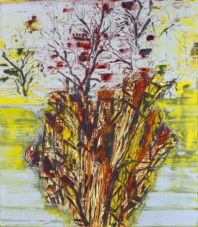 Gilad Efrat, 'Tamarisk Negev', 2014