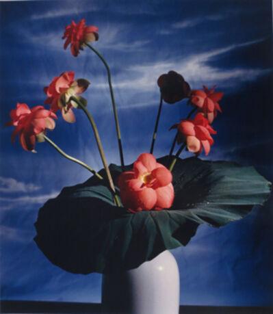 Horst P. Horst, 'Lotus Blossom'