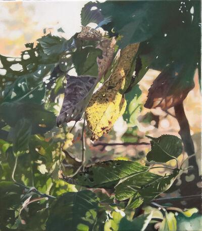 Stephan Kaluza, 'Transit (II) - 57', 2019
