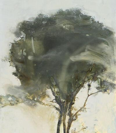 Chung Sang Gon, 'Skin Deep ', 2012