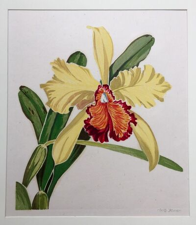 William S. Rice, 'Orchid', ca. 1925-30
