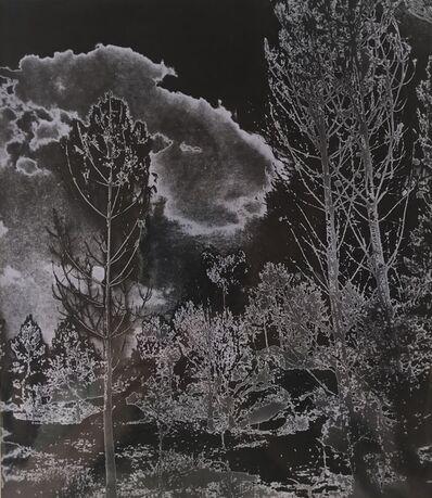 Marcel Bovis, 'Solarised Landscape (1)', c.1930