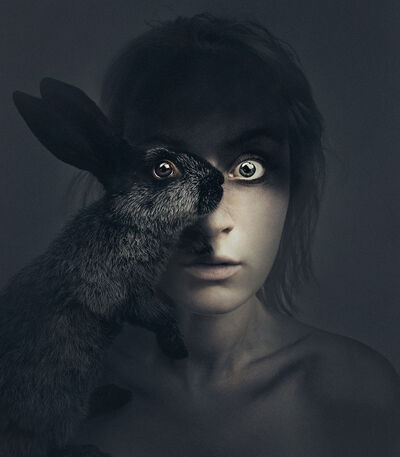 Flóra Borsi, 'Rabbit In Your Headlights', 2016