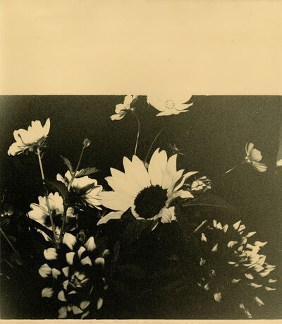 Bruno V. Roels, 'Untitled (Square Of Flowers)', 2020