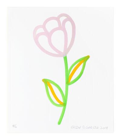Erin D. Garcia, 'Flowers #5', 2019