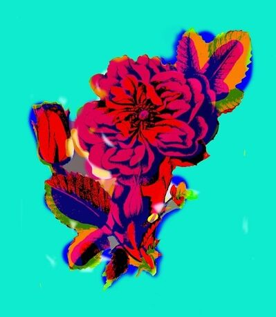 Hojat Amani, 'Flower Series (Gol)', 2015