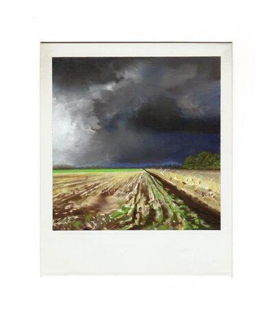 Martí Cormand, 'Farm (granja)', 2019