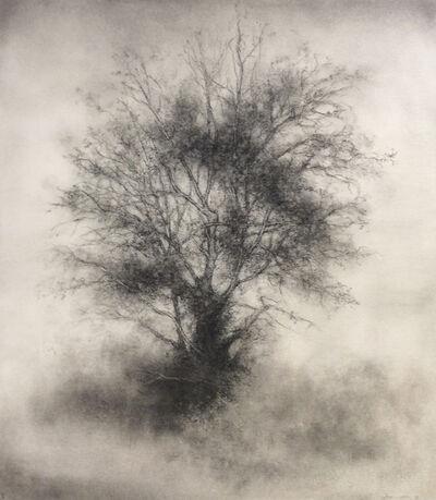 Sue Bryan, 'Greenhorn', 2017