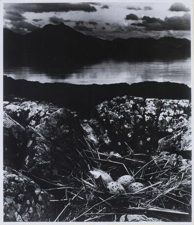 Bill Brandt, 'Gull's Nest on Mid-Summer Night, Isle of Skye', 1947