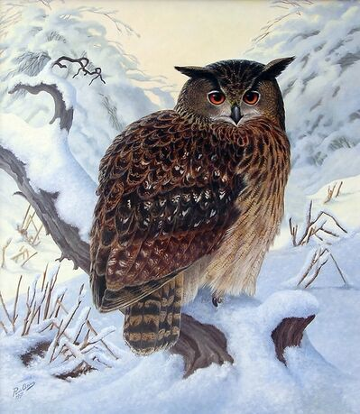 Rob van Assen, 'Eagle owl in the snow', ca. 2006