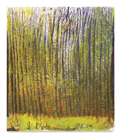 Wolf Kahn, 'Summer Light Caught in the Woods', 2017